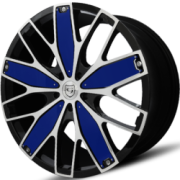 Gianna Fanatic Blue Wheels